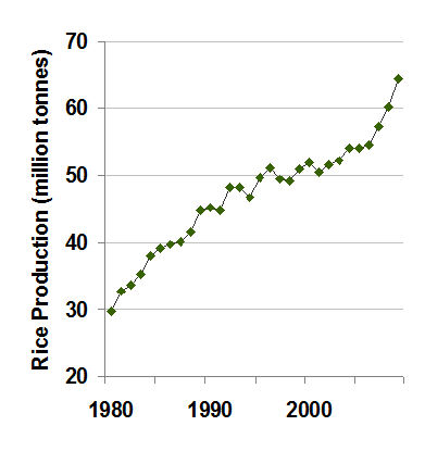 Indonesian rice production since 1980