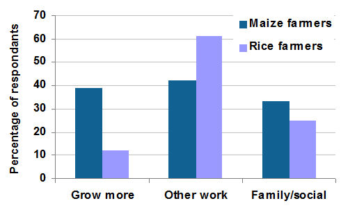 Figure 2: Activities pursued by farmers in time freed-up by using paraquat.